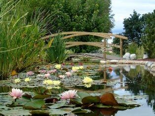 Les Jardins Aquatiques, Saint-Didier-sur-Chalaronne